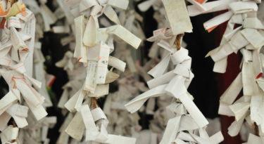 Liberarsi da documenti cartacei
